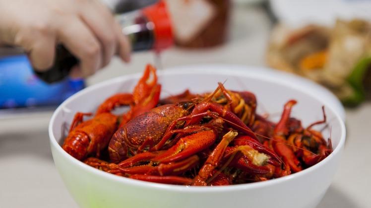 crayfish-1865812_1920